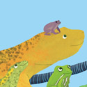 illustration of A group of Amphibians created for a book cover.